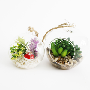2018 Originality new products glass tanks mini landscapes artificial succulent plants