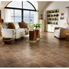Easy Lock Wooden HDF Traditional Living Laminate Flooring China