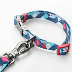 Robust Dog Leashes High Quality Pets Walking Rope
