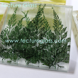 Tecture Specialty organic laminated glass for interior decorations