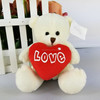 Cute teddy bear valentines day gifts for girlfriend