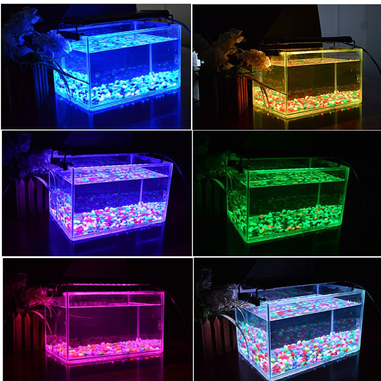 deckey white blue aquarium fish tank led light universal