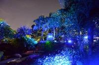 Outdoor Christmas Laser Light,Elf Light Christmas Lights Projector ...