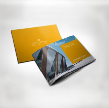 Professional Full Color Cheap Booklet/ Brochure Printing Service Chinese Supplier
