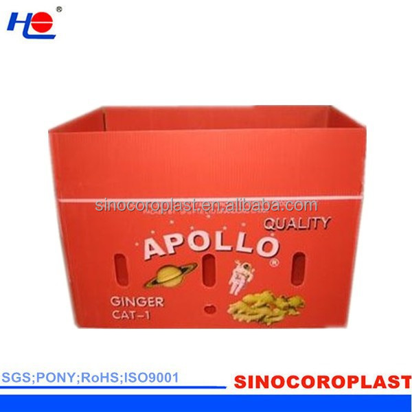 Calcium plastic Ginger Box