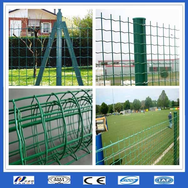 good quality euro fence/Holland wire mesh(made in China) lower price