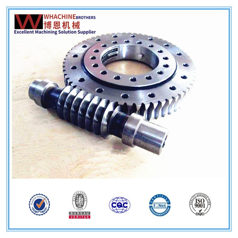 Customized gearbox worm made in China