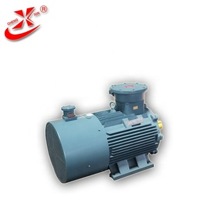 Flame Proof AC Electric Motor 132kW 2980rpm
