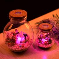 electriferous borosilicate glass vase home decor