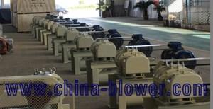 60kPa-100kPa Backwashing Roots Blower