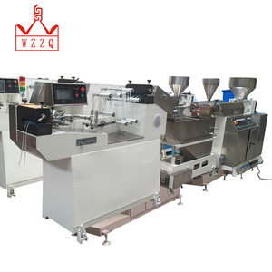 Factory Direct Sale bag zipper extruder in box pouch making machine