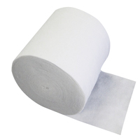Needle Punched Filter Material Super Absorbent Non-woven Fabric