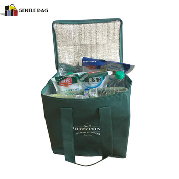 High Quality Insulated Disposable Cooler Bag For Frozen Food