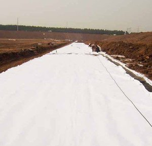 Competitive Geotextile Price of BPM for Civil and Road Construction