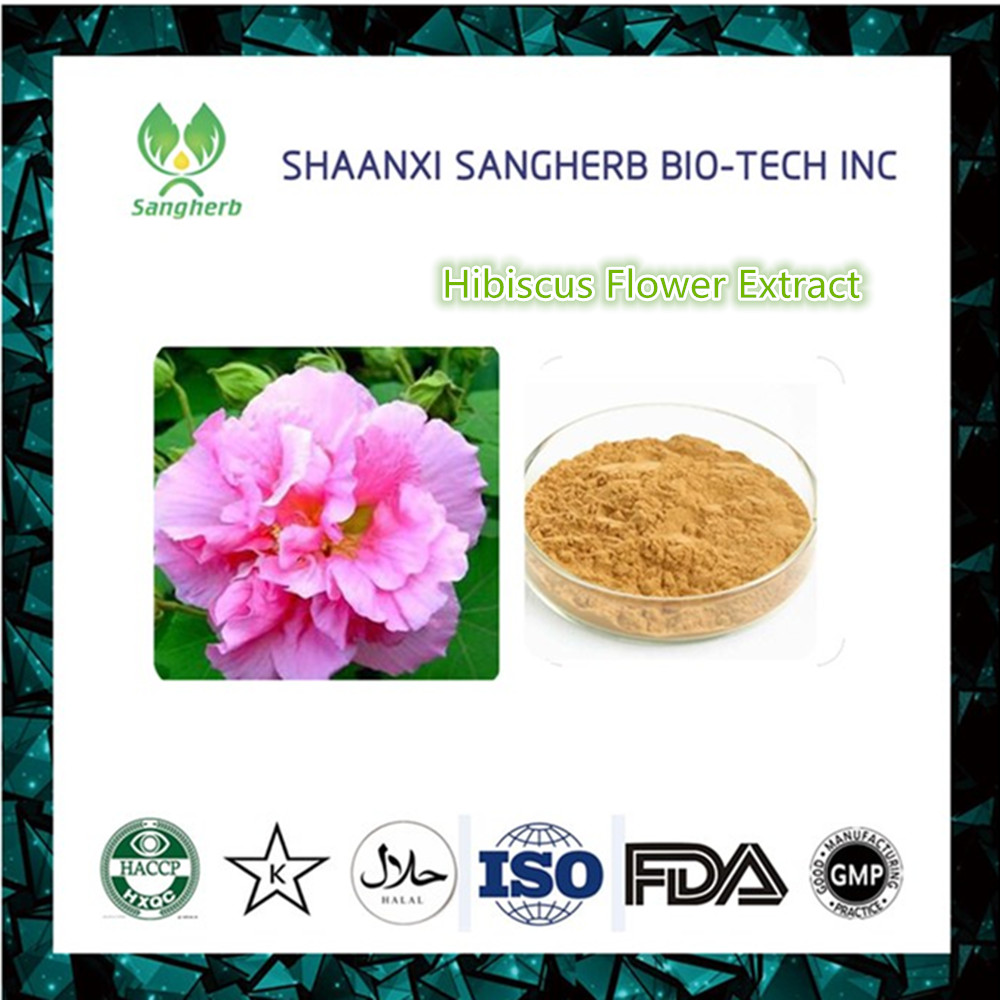 Pure Hibiscus Powder Pure Hibiscus Powder Suppliers And