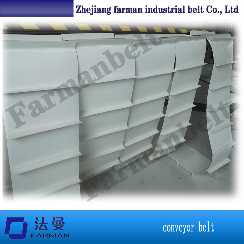 Food grade PVC/PU white conveyor belt for chocalate
