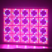 Buy bean plant growth stages led grow light hydroponics kit in ...