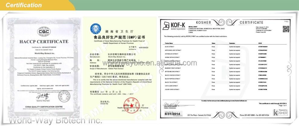 Free Testing Sample Kosher Haccp Gmp Certify Manufacturer Supply Food Grade  Piperine Black Pepper Extract Piper Nigrum L - Buy Piper Nigrum L,Piper