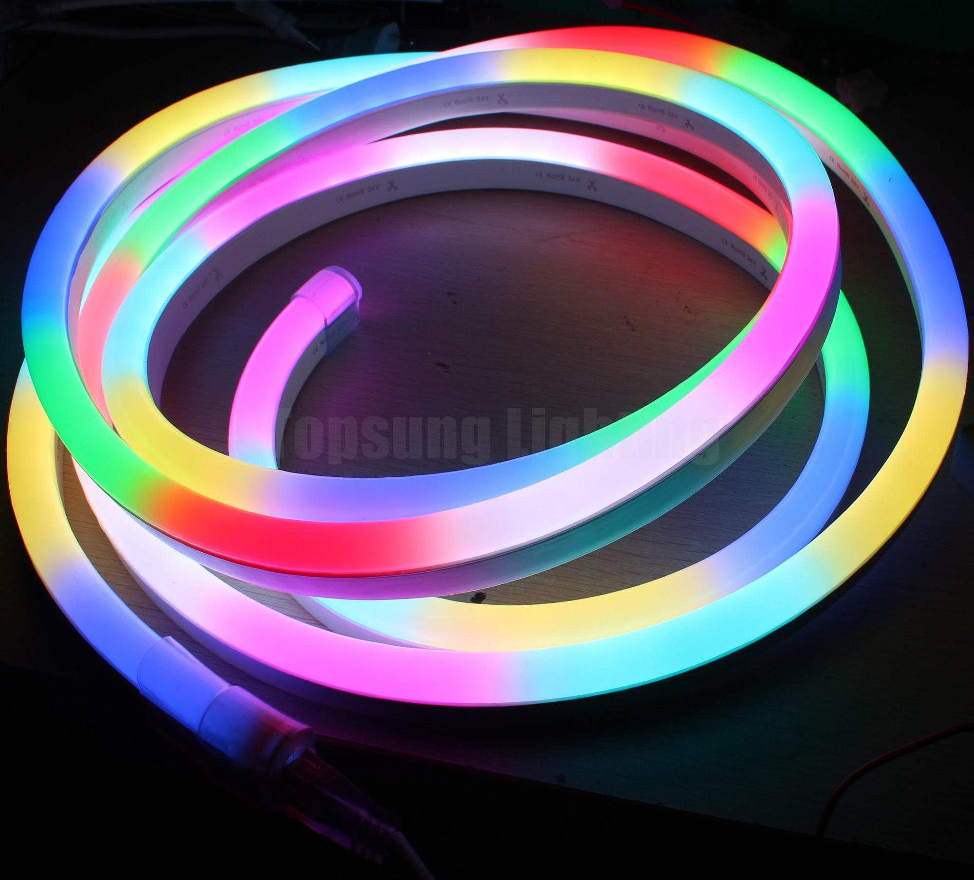 Pixel LED Neon Flex (19).JPG