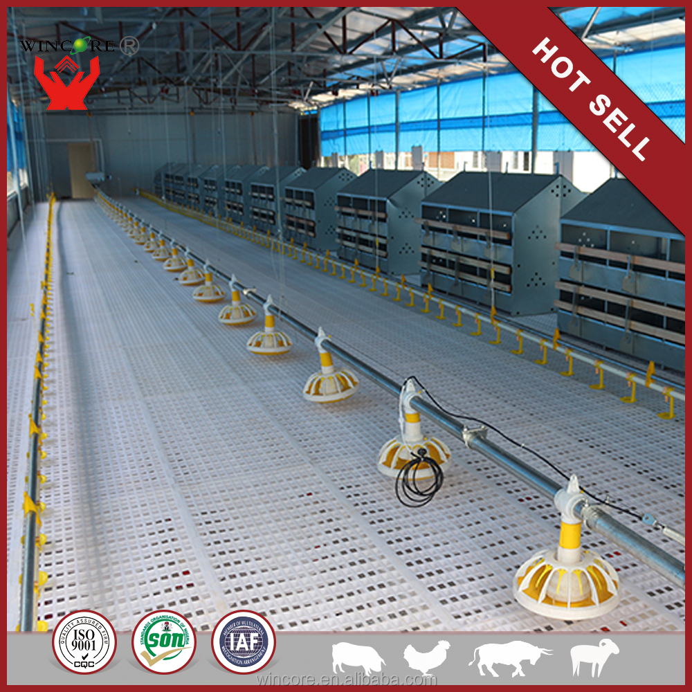 China Manufacturer Hot Sale Automatic Poultry Equipment Price Sale