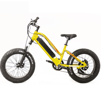 ADA 2019 wholesale in china electric ladies bike;battery bicycles for sale;latest electric bikes direct from china