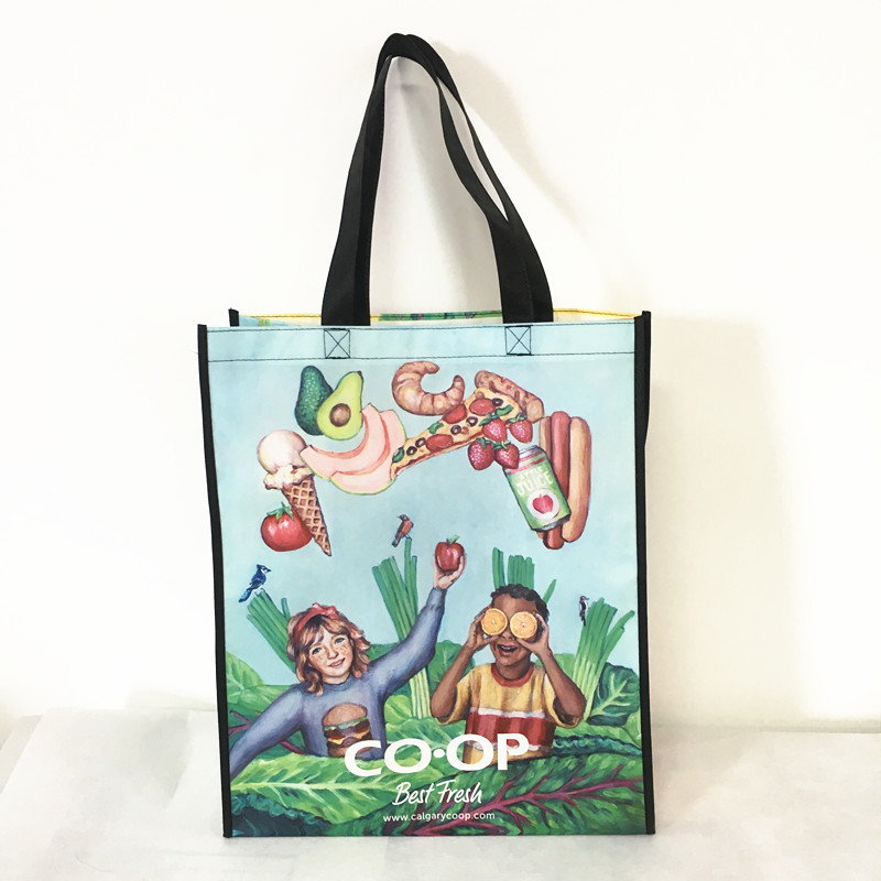 2019 promotional non woven shopping bag