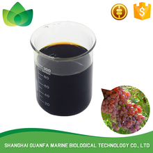 Increase production mango eco fertilizer