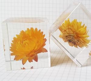 Real Flower Specimen Acrylic Resin Paperweight Wedding Decoration Souvenir Educational Toys