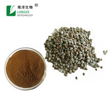 Factory Chasteberry Extract / Chaste Tree Berry Extract Powder / Vitex agnus-castus. bulk supply
