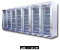 glass door freezer storage cold room for frozen food with shelves / walk-in cooler