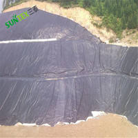 Polyethylene black pond liners for fish tank,China manufacture supply easy installation ASTM geomembrane