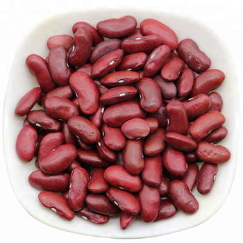 Chinese Bulk Dried Pinto Beans Dark Red Kidney Beans for Sale