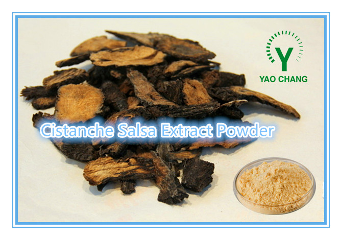 High Quality Nature Cistanche Salsa Extract Powder