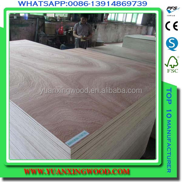 plywood prices in india/birch timber logs/pvc edging plywood/we produce birch plain,veneer ply,bleached,uv,polish birch plywoods
