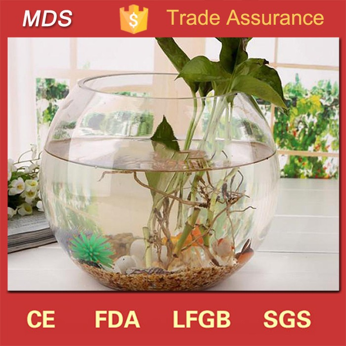 Transparent Round Glass Bowl Clear Sphere Vase Fish Tank Jar Buy