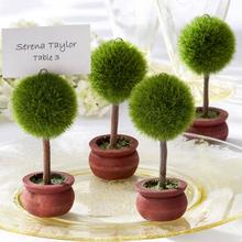 Green round ball pot plant place card holder party supplies decorations wedding table centerpieces