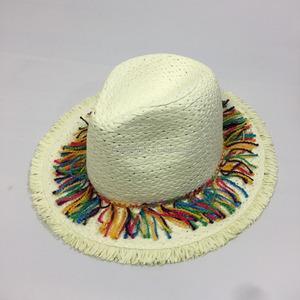 2aab2a7134cb9 Bohemian Straw Hat