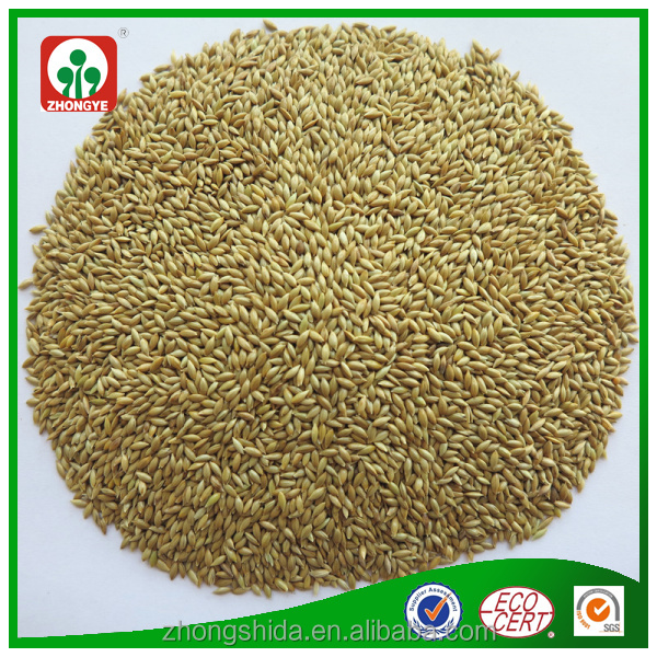 Canada origin canary seeds with good quality and cheap price