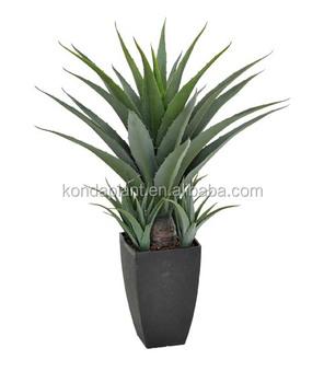 Cheap Artificial Ornamenta Plants Live Indoor Air Bonsai Trees ...