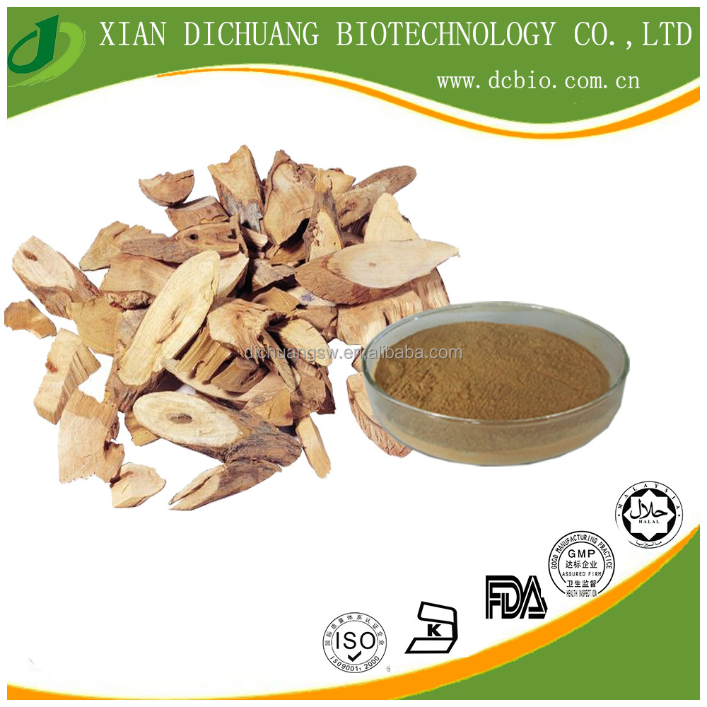 health medicine ingredients DONG QUAI Extract Powder/ Angelica sinensis Extract 5:1, 10:1, 20:1