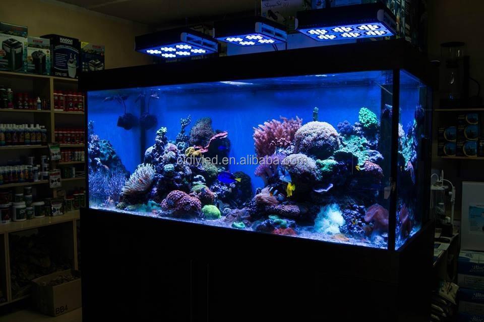 Plafoniere Led Per Acquari Marini Cinesi : Cinese marini plafoniera acquario condotto luce per