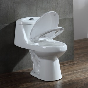 Chinese Cheap European types Siphonic One Piece Bathroom Ceramic WC Toilet