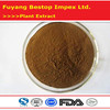 Ling Zhi Health Care product High Quality Reishi Mushroom Extract