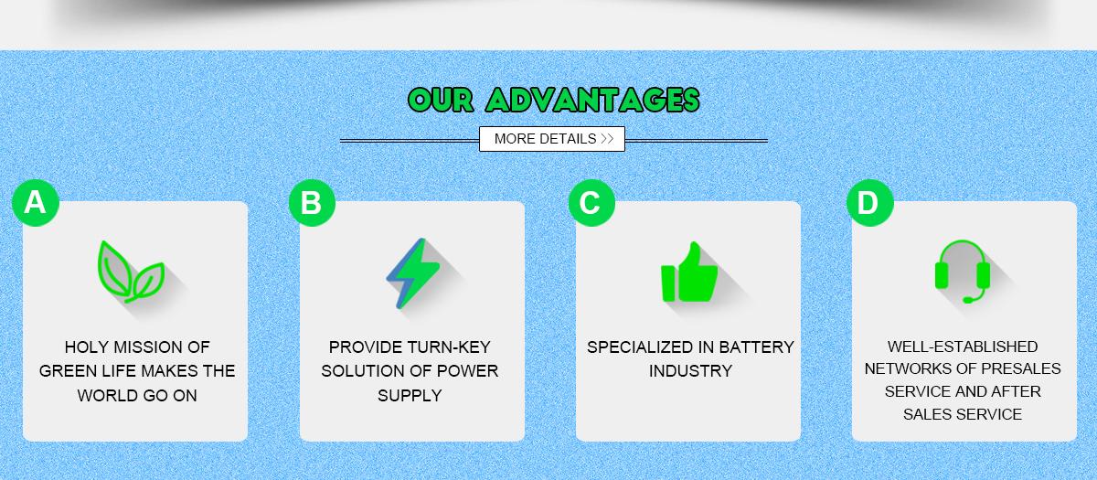 Beijing Huaju New Power Technology & Development Co , Ltd