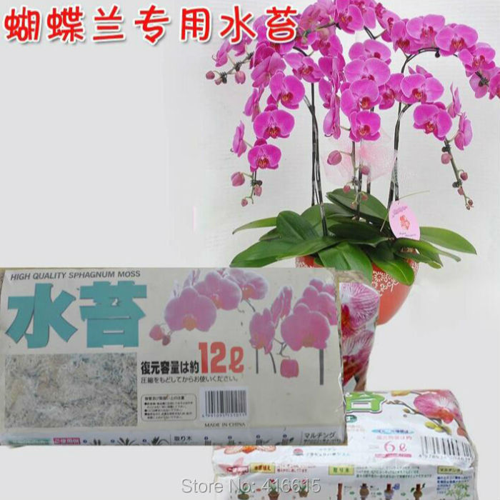 online kaufen gro handel sphagnum moos aus china sphagnum moos gro h ndler. Black Bedroom Furniture Sets. Home Design Ideas