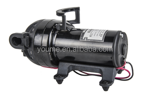 water pump garden decoration/12v dc high pressure water pumpwater pump in nepal