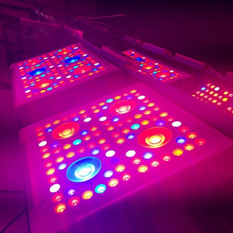 Greenhouse agriculture 280 W 300 W panel grow light led grow light plant growth paypal for microgreens