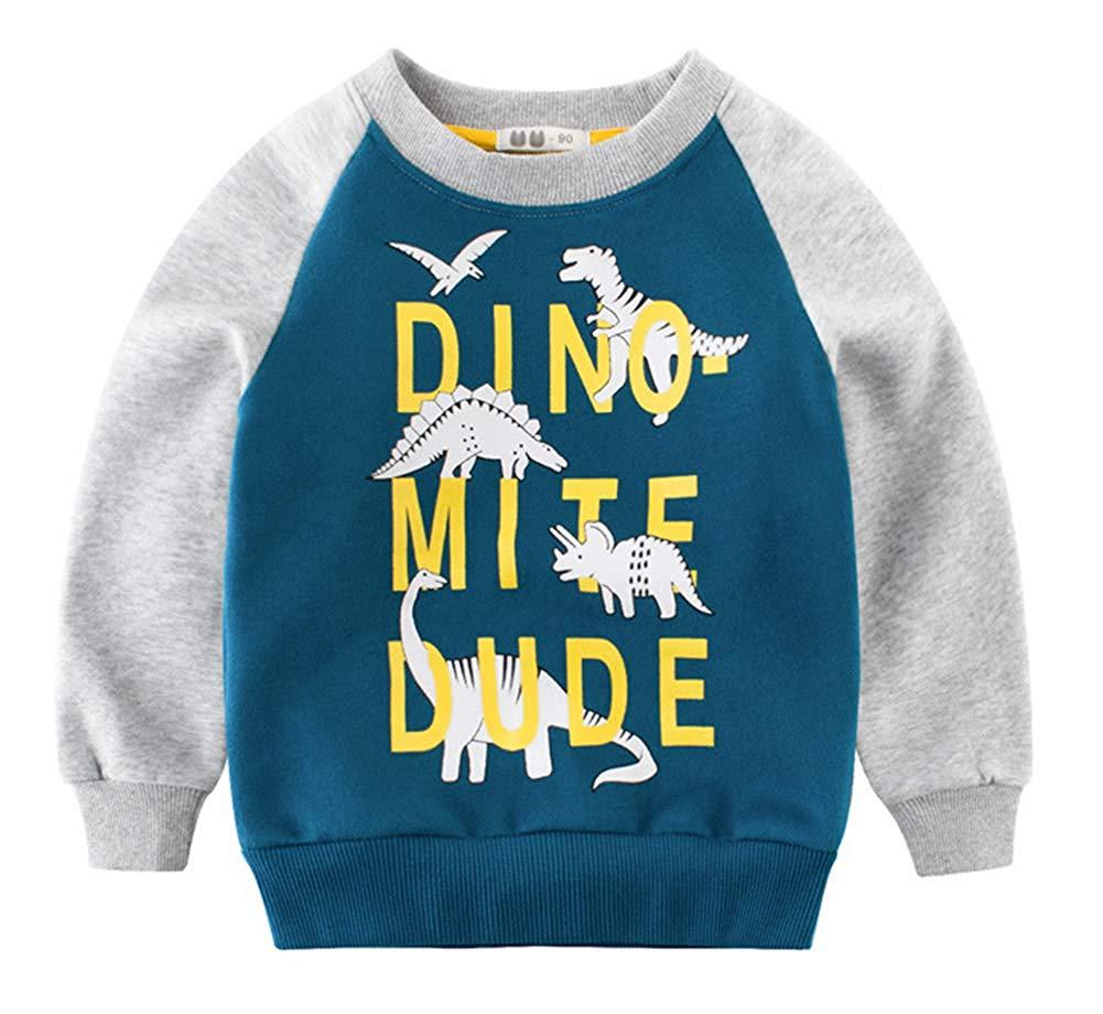 8c0d2e577 Cheap Cheap Boys Sweatshirts