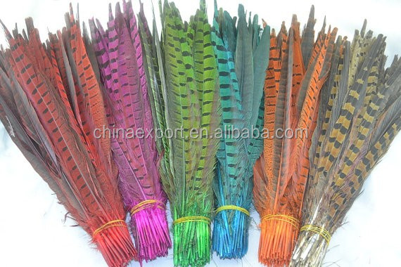 Factory cheap natural reeves pheasant feathers for decoration