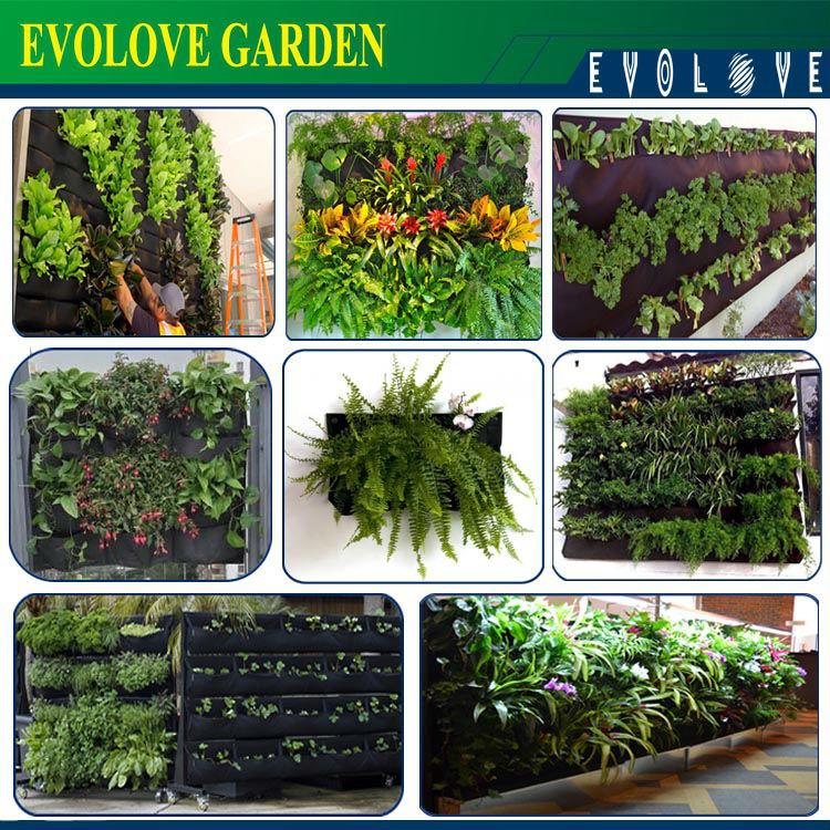 Home Garden Irrigation System 18